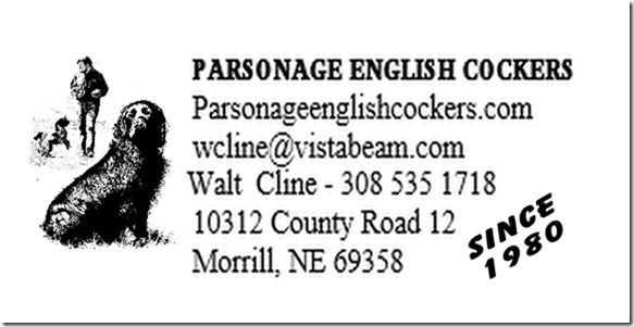 Parsaonage English Cockers